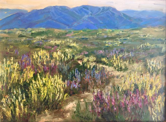 Lupine and Baldy 11x14